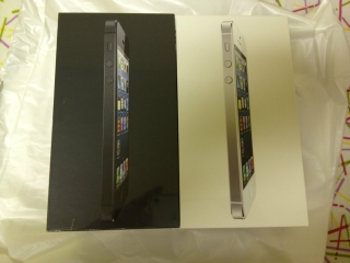 Apple iPhone 5 16gb black and white